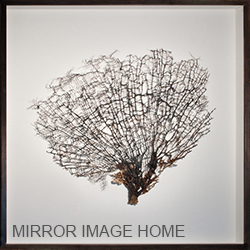 Mirror Image Artwork