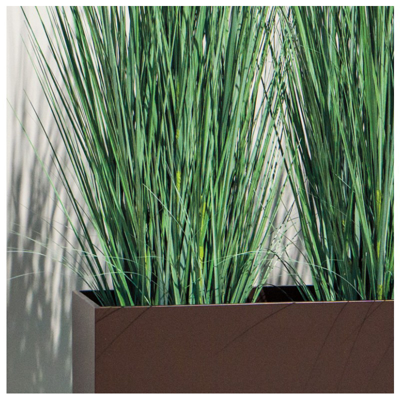 Gold leaf design group tall japanese grass in custom for Tall oriental grass